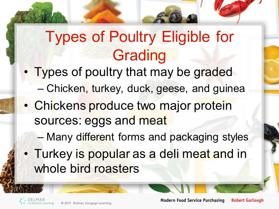 Types of Poultry Eligible for Grading Types of poultry that may be graded –Chicken, turkey, duck, geese, and guinea Chickens produce two major protein