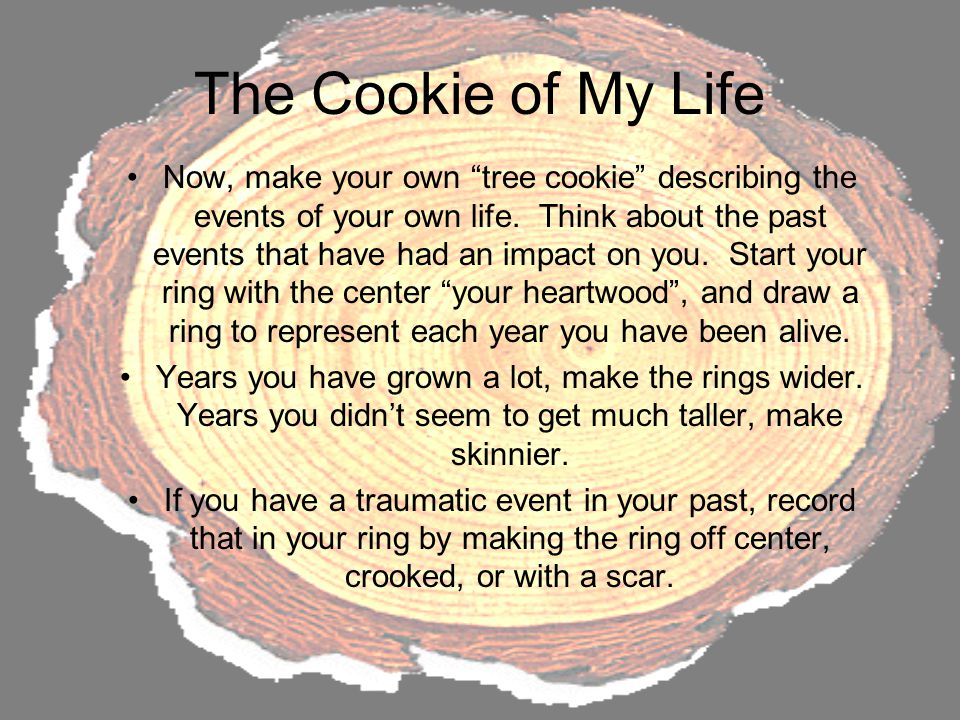 "The Cookie of My Life Now, make your own ""tree cookie"" describing the events of your own life. Think about the past events that have had an impact on"