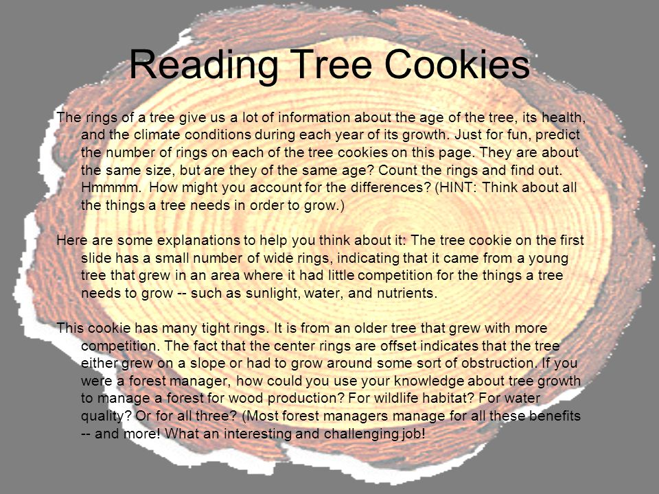 Reading Tree Cookies The rings of a tree give us a lot of information about the age of the tree, its health, and the climate conditions during each year of its growth.