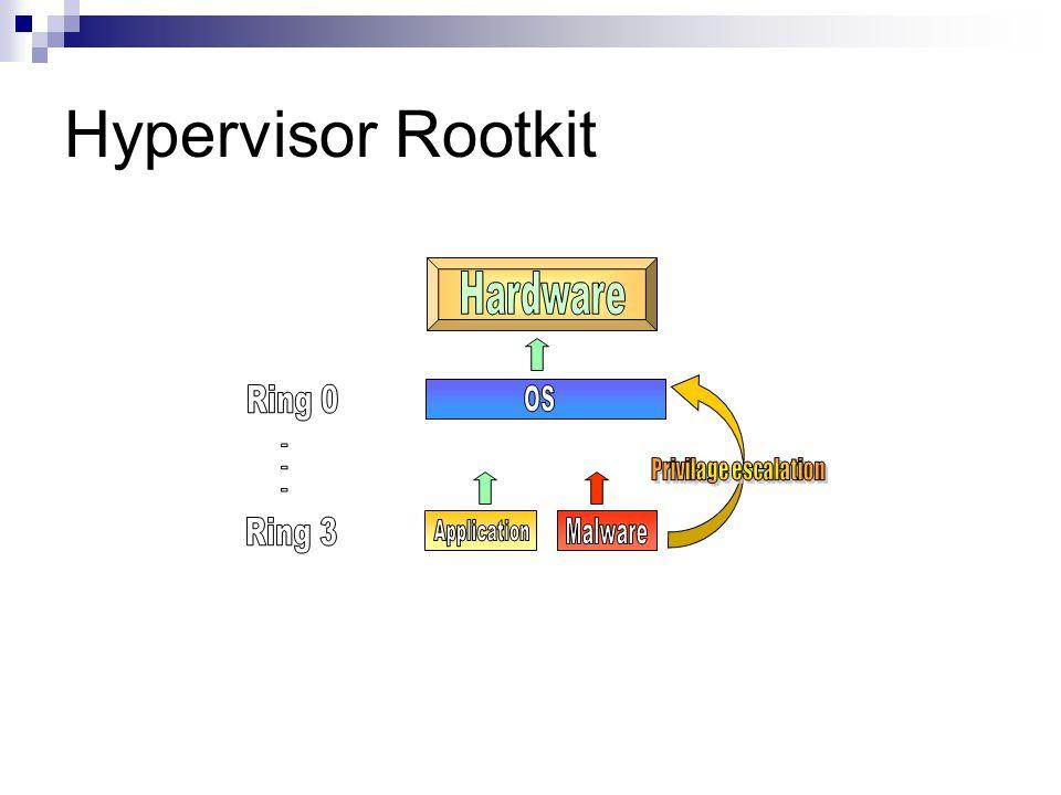 Hypervisor Rootkit