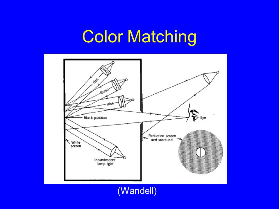 Color Matching (Wandell)