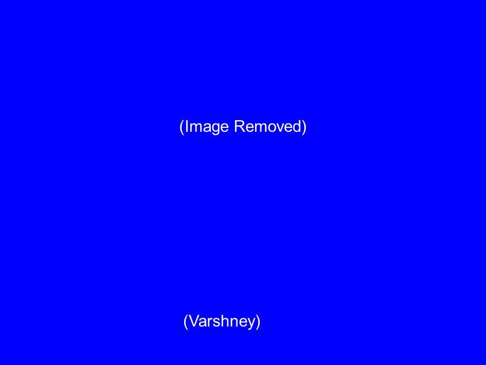 (Varshney) (Image Removed)