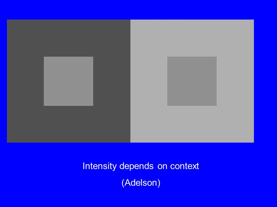 Intensity depends on context (Adelson)