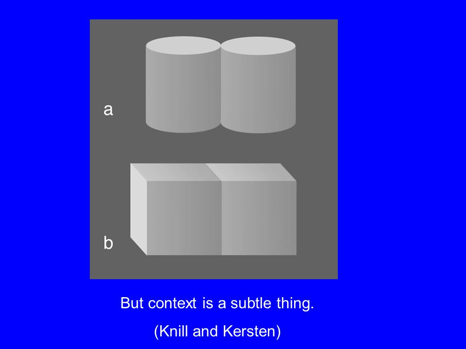 But context is a subtle thing. (Knill and Kersten)