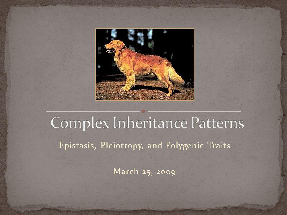 Epistasis, Pleiotropy, and Polygenic Traits March 25, 2009