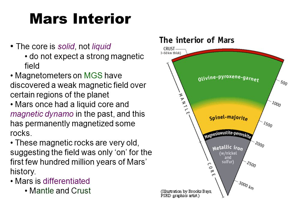 The core is solid, not liquid do not expect a strong magnetic field Magnetometers on MGS have discovered a weak magnetic field over certain regions of the planet Mars once had a liquid core and magnetic dynamo in the past, and this has permanently magnetized some rocks.