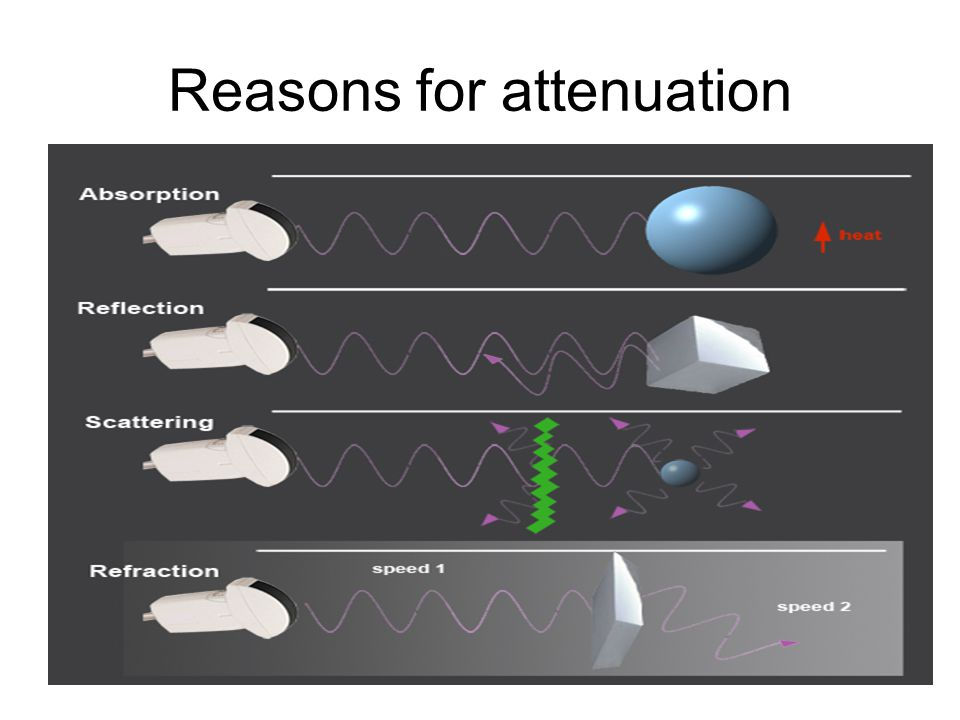 Reasons for attenuation