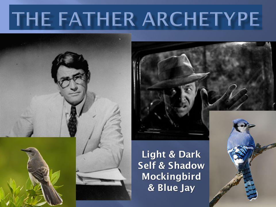 Light & Dark Self & Shadow Mockingbird & Blue Jay