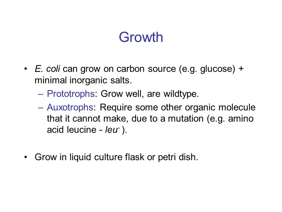 Growth E. coli can grow on carbon source (e.g. glucose) + minimal inorganic salts.