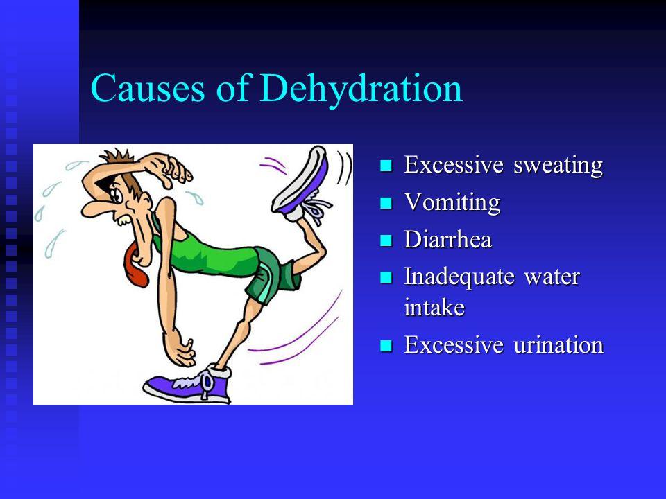 Causes of Dehydration n Excessive sweating n Vomiting n Diarrhea n Inadequate water intake n Excessive urination