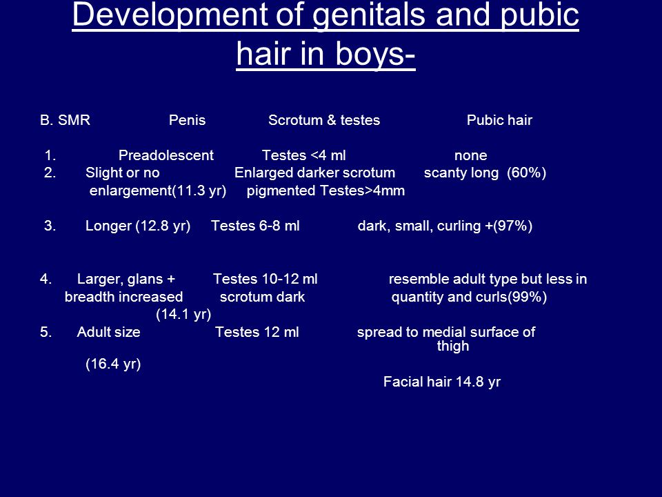 Development of genitals and pubic hair in boys- B. SMR Penis Scrotum & testes Pubic hair 1. Preadolescent Testes <4 ml none 2. Slight or no Enlarged d