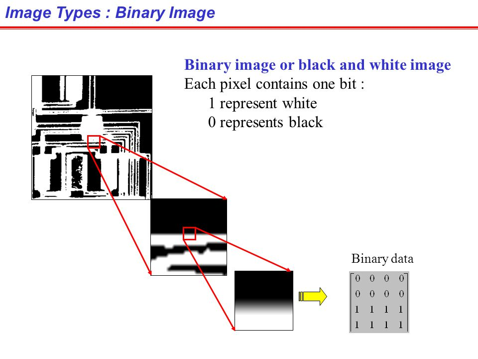 Digital Image Types : RGB Image Color image or RGB image: each pixel contains a vector representing red, green and blue components. RGB components