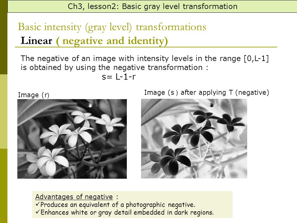 Basic intensity (gray level) transformations Linear ( negative and identity) Ch3, lesson2: Basic gray level transformation The negative of an image with intensity levels in the range [0,L-1] is obtained by using the negative transformation : s= L-1-r Example the following matrix represents the pixels values of an 8-bit image (r), apply negative transform and find the resulting image pixel values.