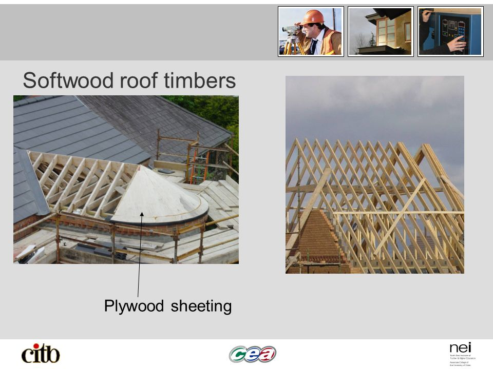 Softwood roof timbers Plywood sheeting