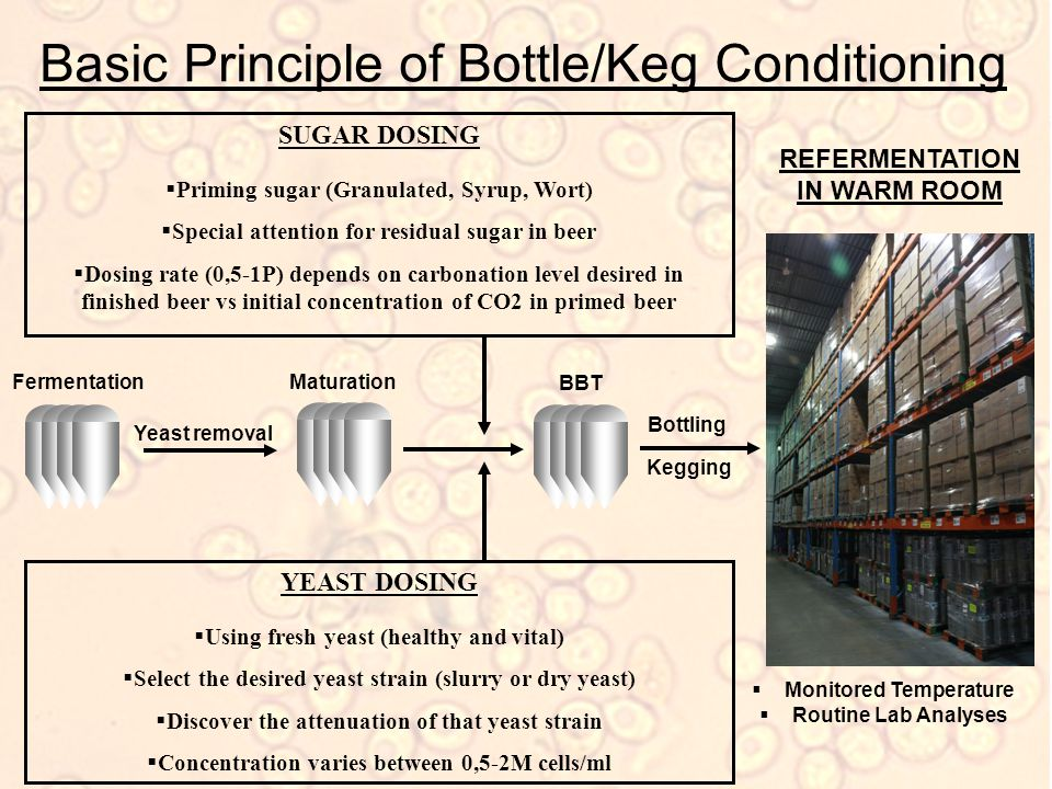 Basic Principle of Bottle/Keg Conditioning SUGAR DOSING  Priming sugar (Granulated, Syrup, Wort)  Special attention for residual sugar in beer  Dosing rate (0,5-1P) depends on carbonation level desired in finished beer vs initial concentration of CO2 in primed beer REFERMENTATION IN WARM ROOM Fermentation Yeast removal Maturation BBT YEAST DOSING  Using fresh yeast (healthy and vital)  Select the desired yeast strain (slurry or dry yeast)  Discover the attenuation of that yeast strain  Concentration varies between 0,5-2M cells/ml Bottling Kegging  Monitored Temperature  Routine Lab Analyses
