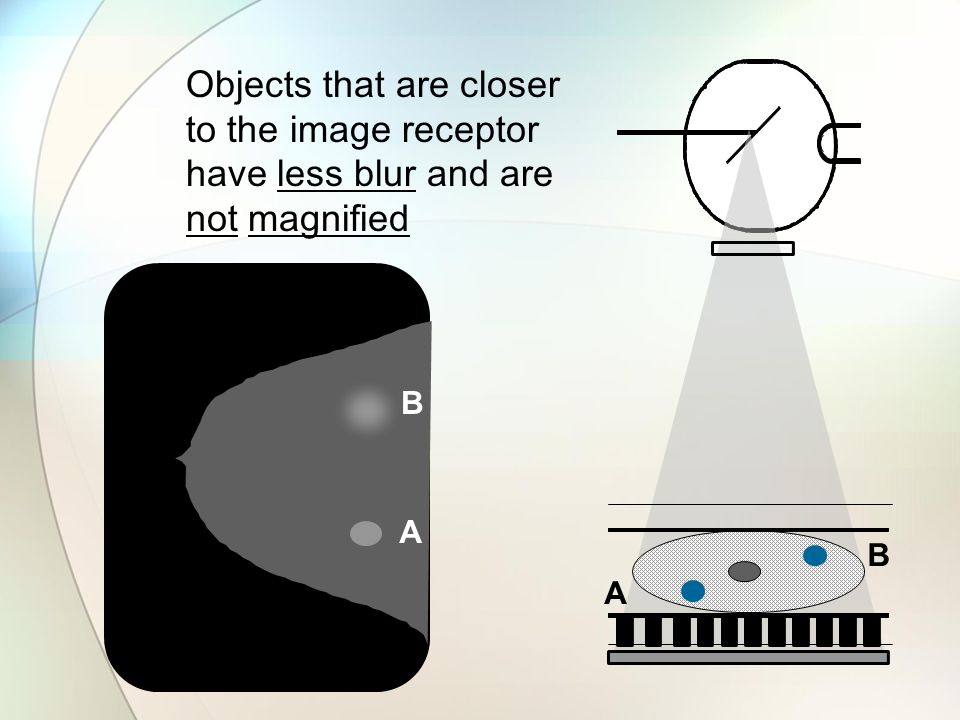 A B A B Objects that are closer to the image receptor have less blur and are not magnified
