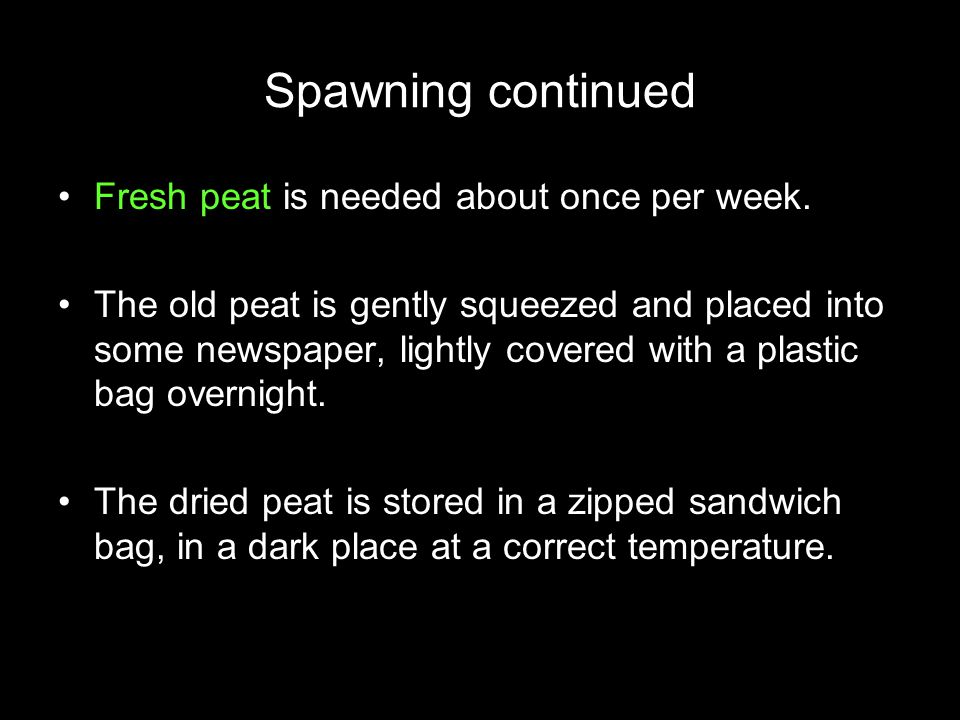 Spawning continued Fresh peat is needed about once per week.