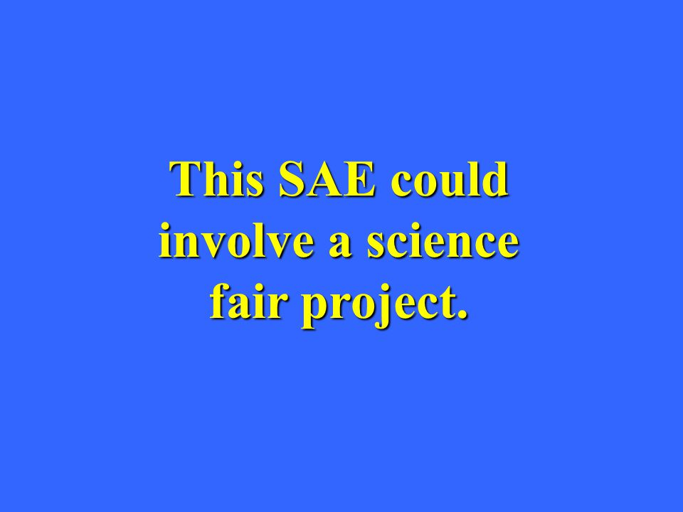 This SAE could involve a science fair project.