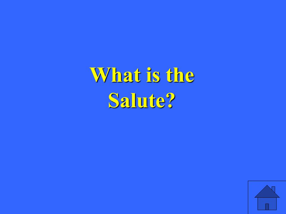 What is the Salute
