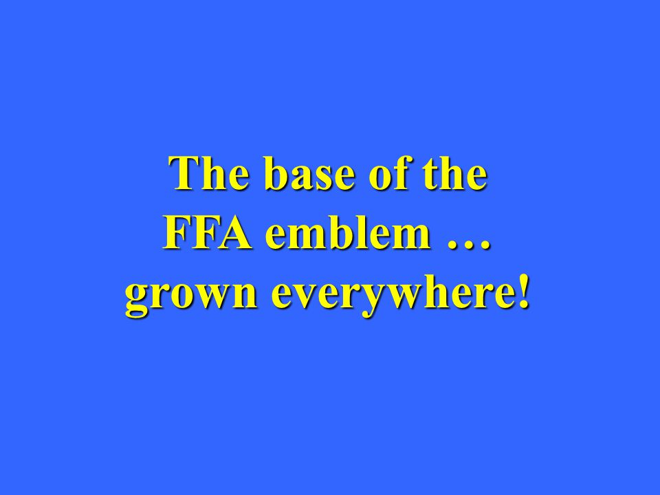 The base of the FFA emblem … grown everywhere!