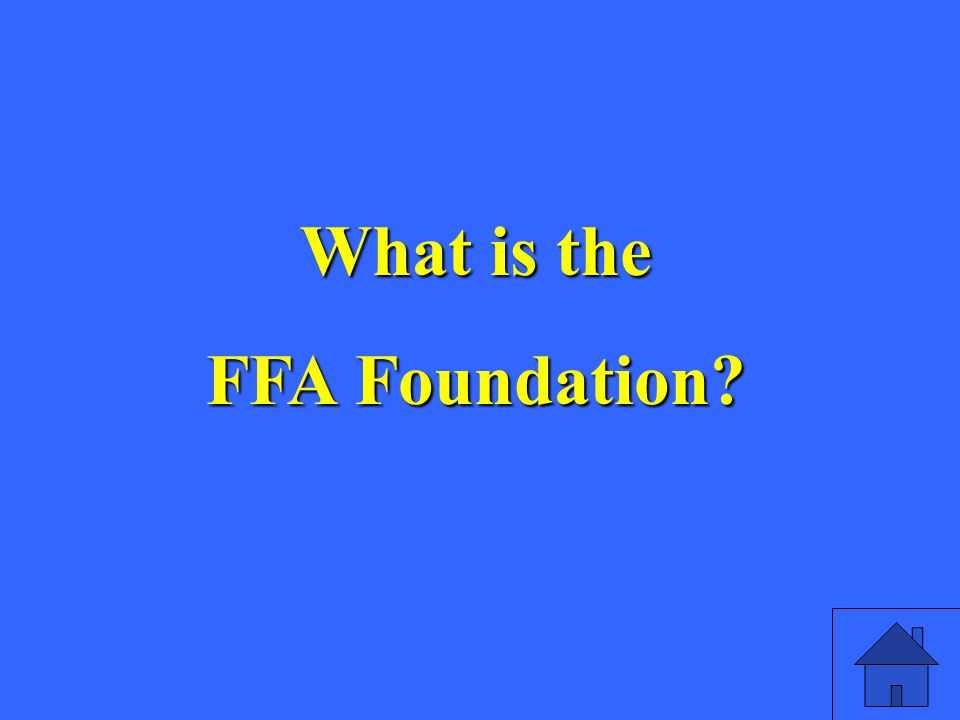 What is the FFA Foundation
