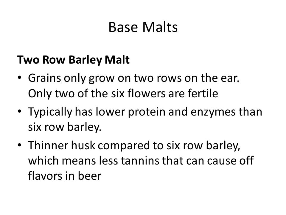 Base Malts Two Row Barley Malt Grains only grow on two rows on the ear. Only two of the six flowers are fertile Typically has lower protein and enzyme
