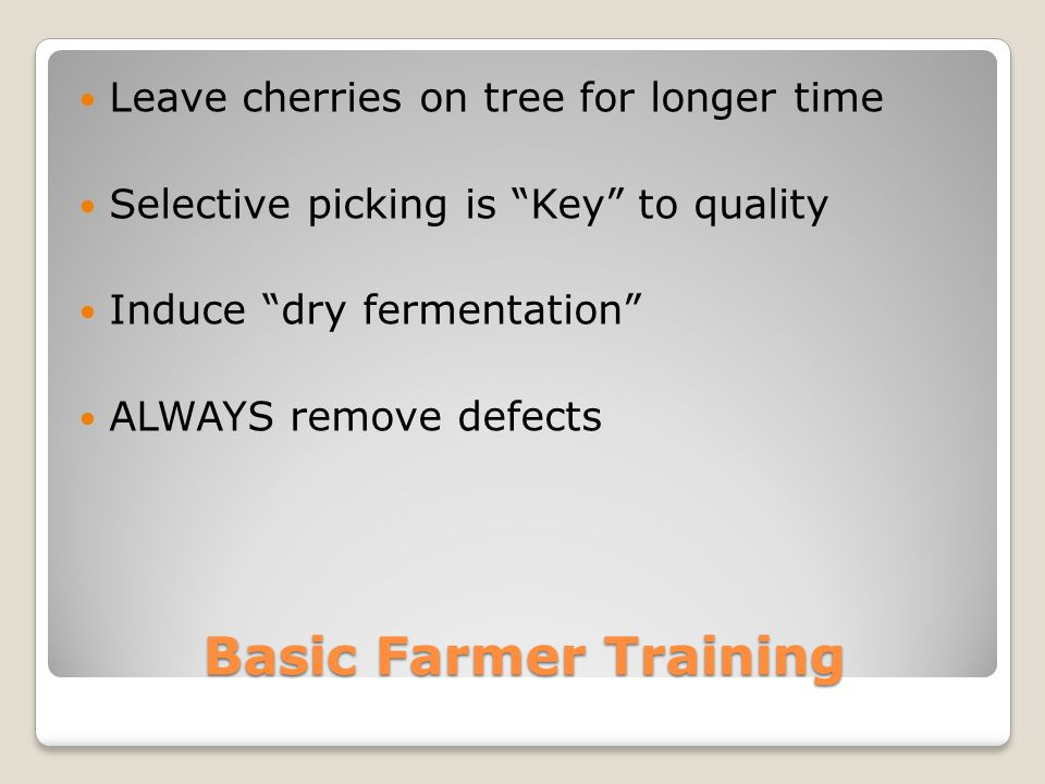 Basic Farmer Training Leave cherries on tree for longer time Selective picking is Key to quality Induce dry fermentation ALWAYS remove defects