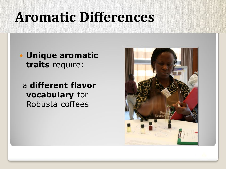 Unique aromatic traits require: a different flavor vocabulary for Robusta coffees Aromatic Differences