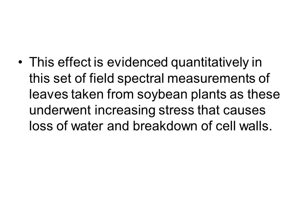This effect is evidenced quantitatively in this set of field spectral measurements of leaves taken from soybean plants as these underwent increasing stress that causes loss of water and breakdown of cell walls.