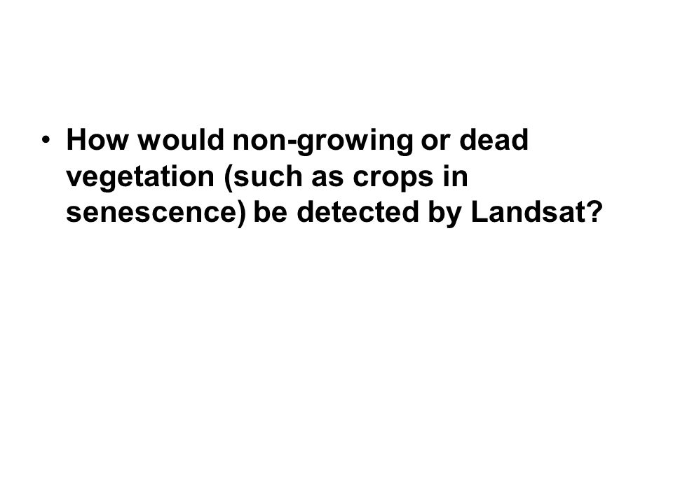 How would non-growing or dead vegetation (such as crops in senescence) be detected by Landsat?