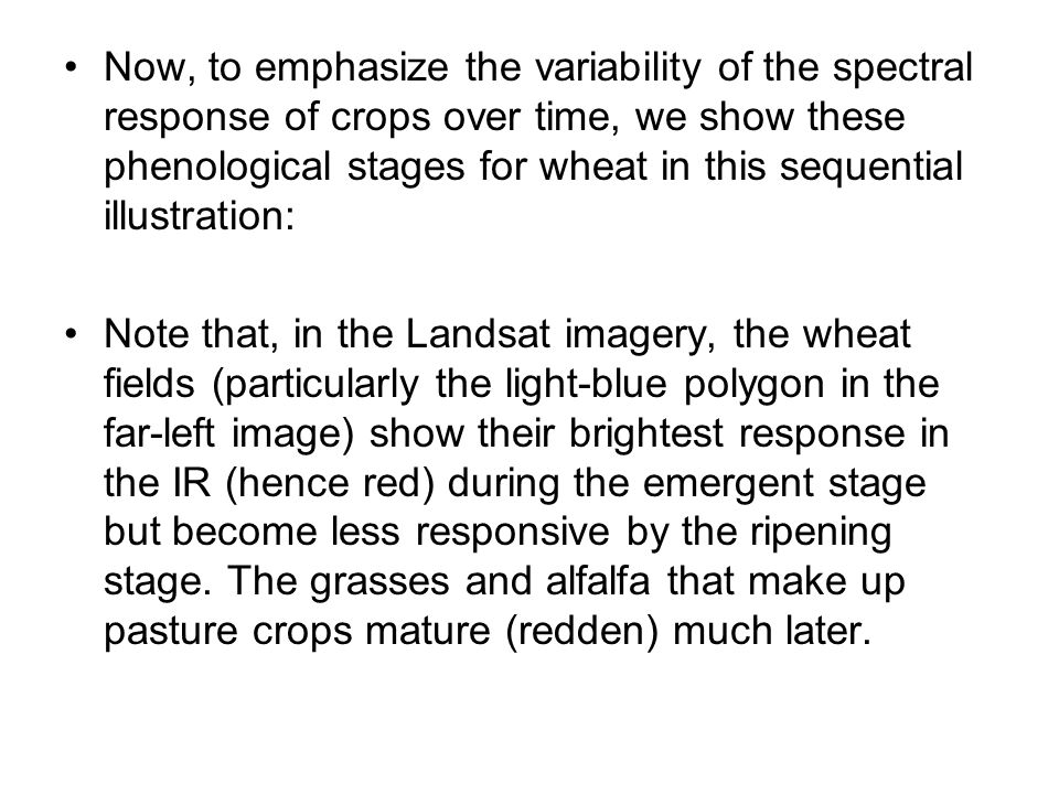 Now, to emphasize the variability of the spectral response of crops over time, we show these phenological stages for wheat in this sequential illustration: Note that, in the Landsat imagery, the wheat fields (particularly the light-blue polygon in the far-left image) show their brightest response in the IR (hence red) during the emergent stage but become less responsive by the ripening stage.