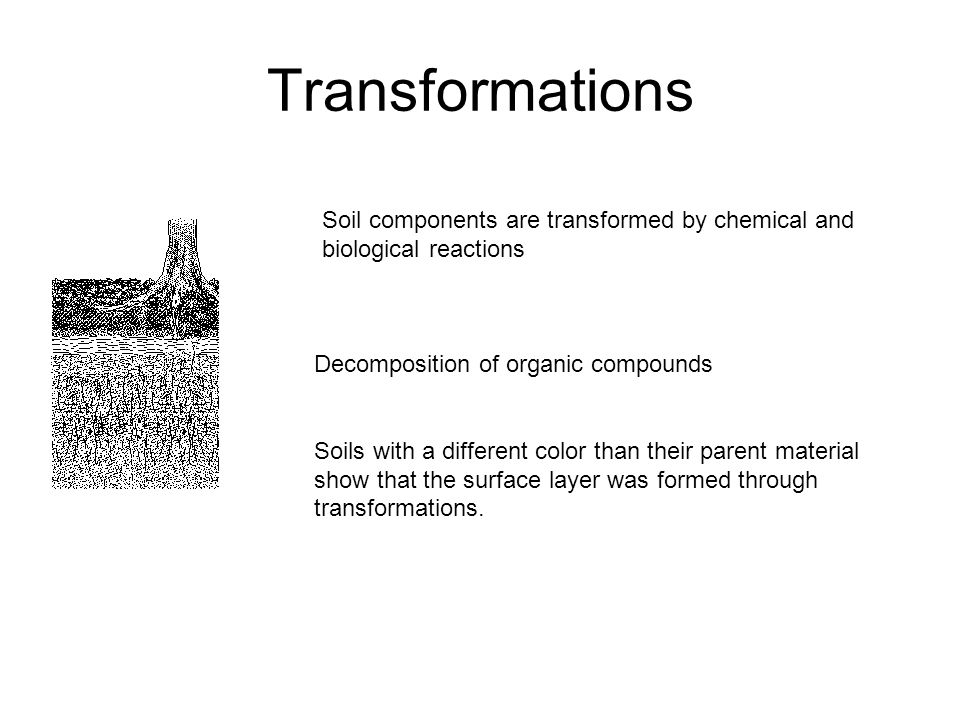 Transformations Soil components are transformed by chemical and biological reactions Decomposition of organic compounds Soils with a different color than their parent material show that the surface layer was formed through transformations.