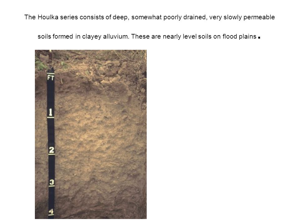The Houlka series consists of deep, somewhat poorly drained, very slowly permeable soils formed in clayey alluvium.