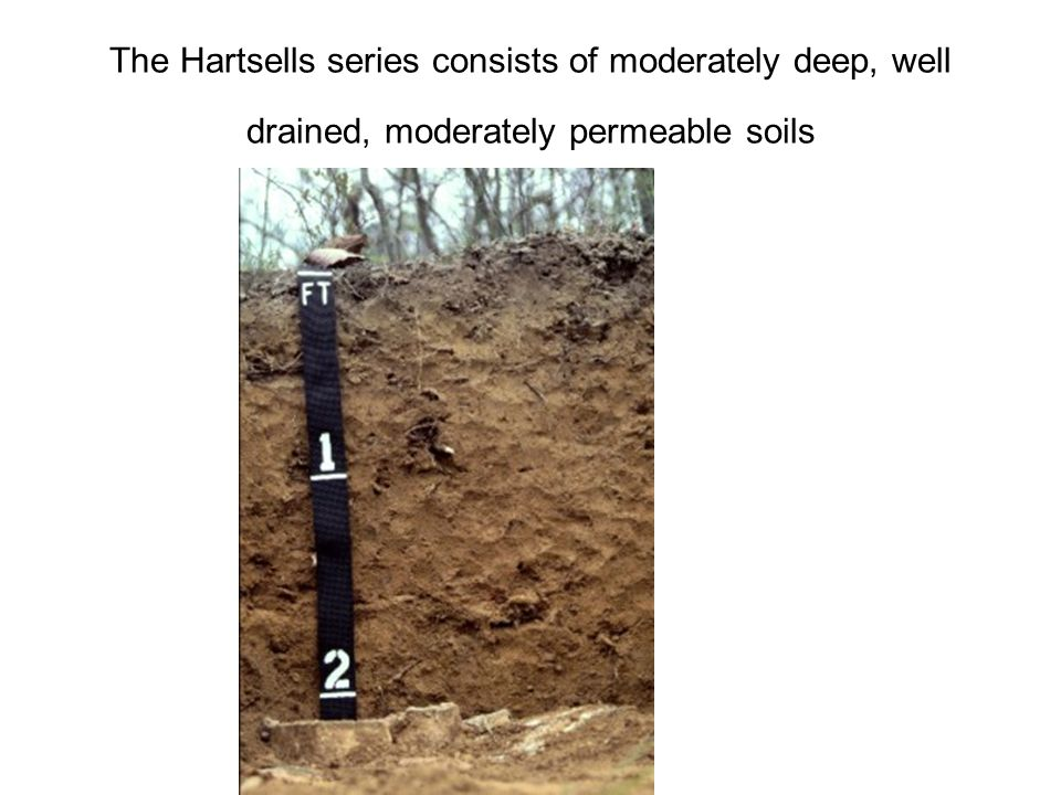 The Hartsells series consists of moderately deep, well drained, moderately permeable soils