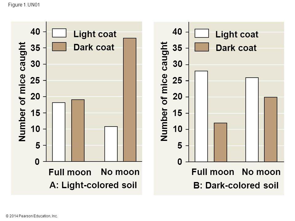 © 2014 Pearson Education, Inc. Figure 1.UN01 Light coat Full moon Dark coat No moon A: Light-colored soil Full moon No moon B: Dark-colored soil Light