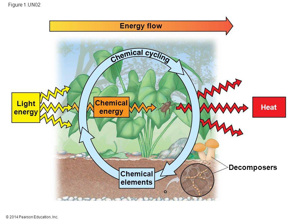© 2014 Pearson Education, Inc. Figure 1.UN02 Energy flow Light energy Chemical energy Chemical elements Decomposers Heat