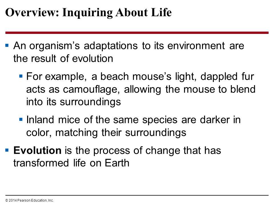 © 2014 Pearson Education, Inc. Figure 1.1