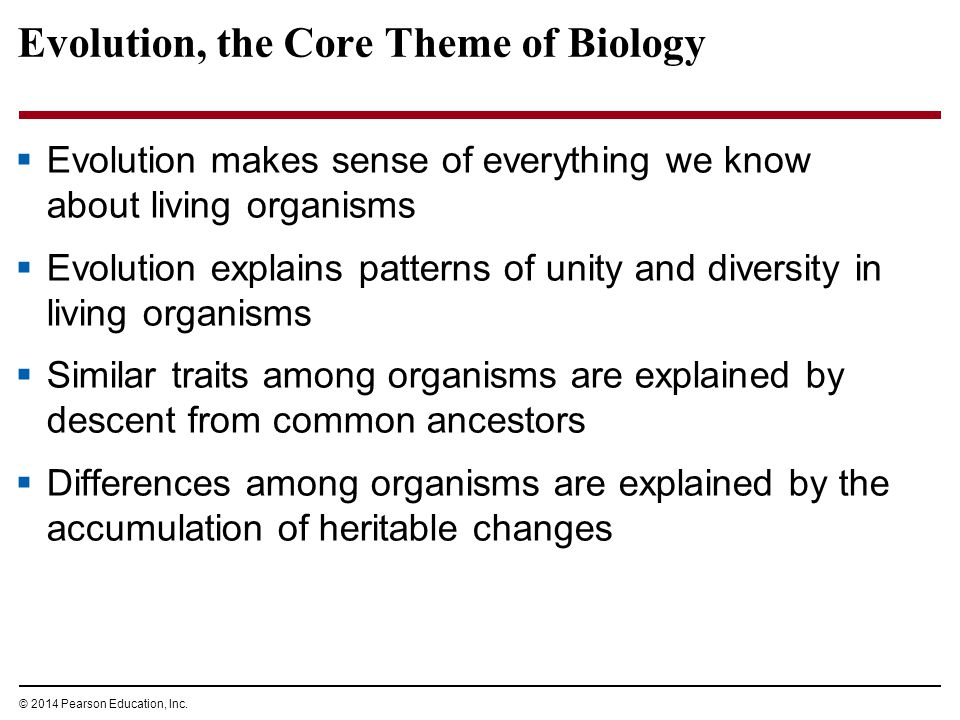 © 2014 Pearson Education, Inc. Evolution, the Core Theme of Biology  Evolution makes sense of everything we know about living organisms  Evolution e