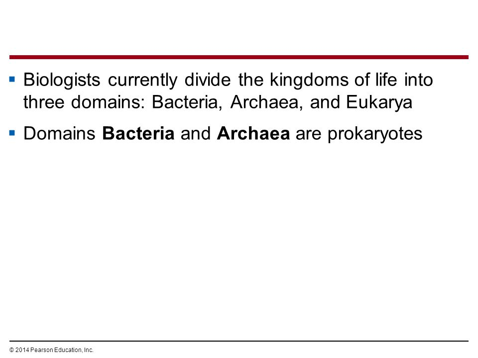 © 2014 Pearson Education, Inc.  Biologists currently divide the kingdoms of life into three domains: Bacteria, Archaea, and Eukarya  Domains Bacteri