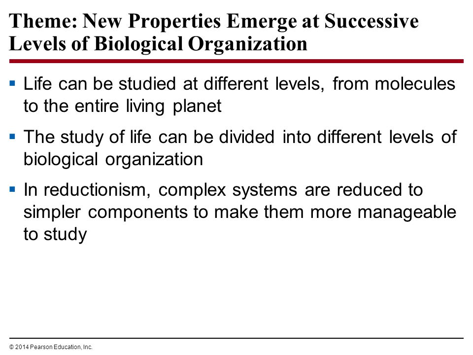 © 2014 Pearson Education, Inc. Theme: New Properties Emerge at Successive Levels of Biological Organization  Life can be studied at different levels,