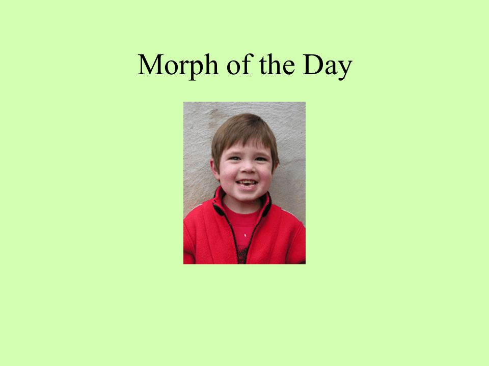 Morph of the Day