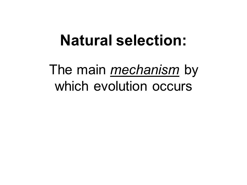 Natural selection: The main mechanism by which evolution occurs