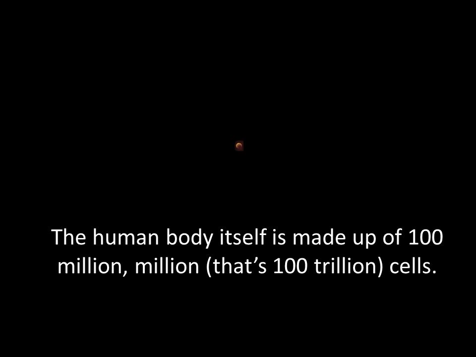 The human body itself is made up of 100 million, million (that's 100 trillion) cells.