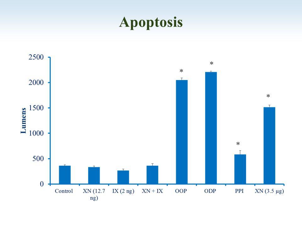 Apoptosis * * * *