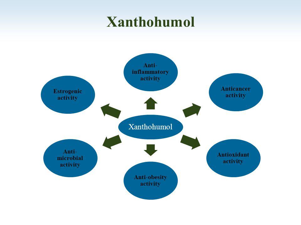 b a Xanthohumol - Dry Hopping 66 %