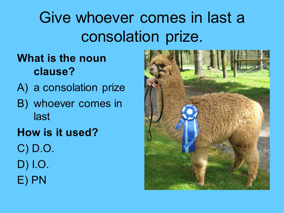 Give whoever comes in last a consolation prize. What is the noun clause.