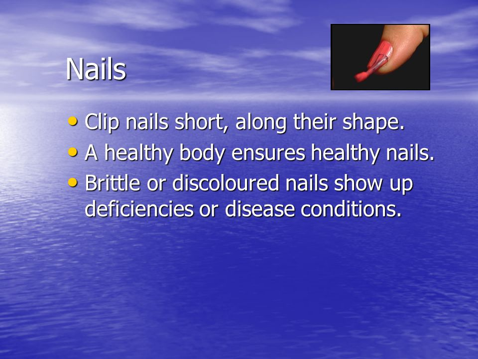 Nails Clip nails short, along their shape. Clip nails short, along their shape. A healthy body ensures healthy nails. A healthy body ensures healthy n