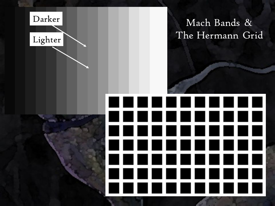 Darker Lighter Mach Bands & The Hermann Grid
