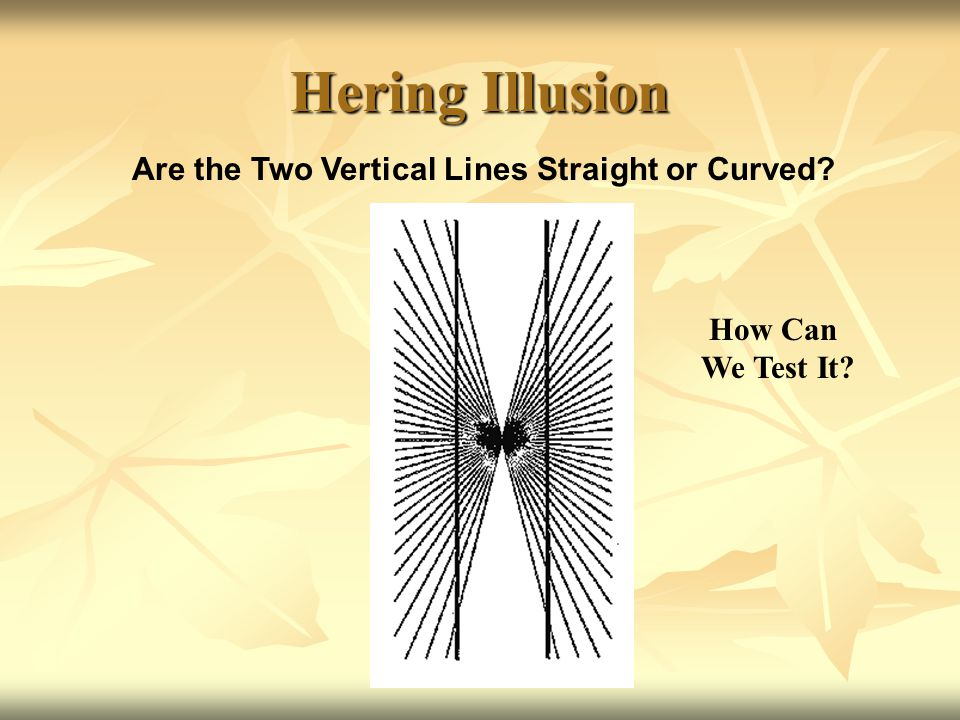Hering Illusion Are the Two Vertical Lines Straight or Curved? How Can We Test It?