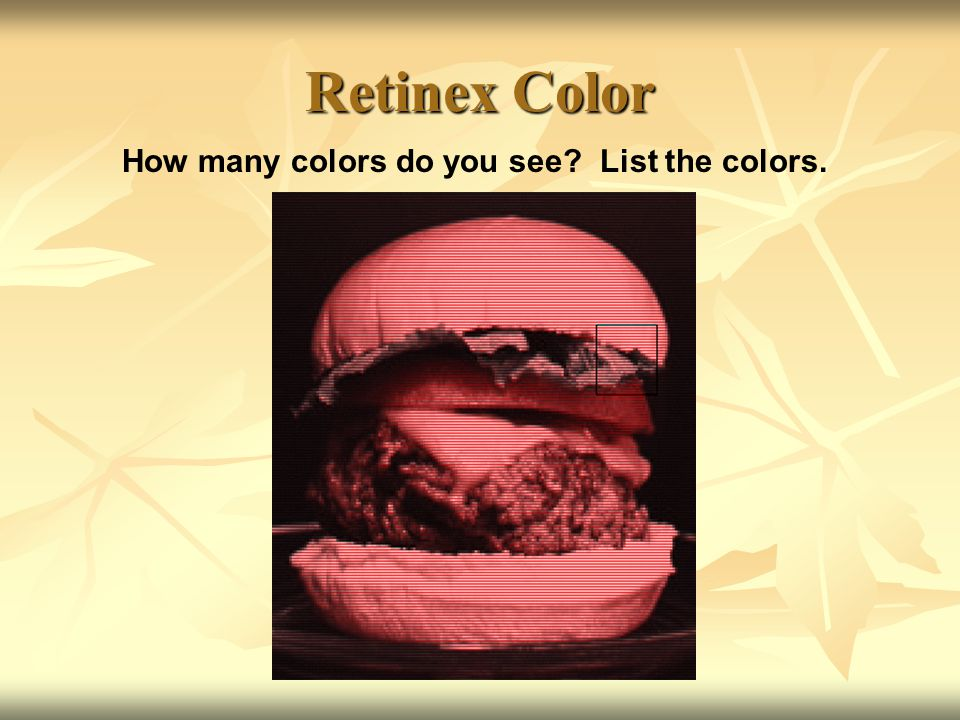 One More Look… As we go through the illusions again, for each example discuss the following as a class: What did you see.